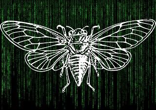 インターネット最大のミステリー。cicada3301の真相に迫る!!