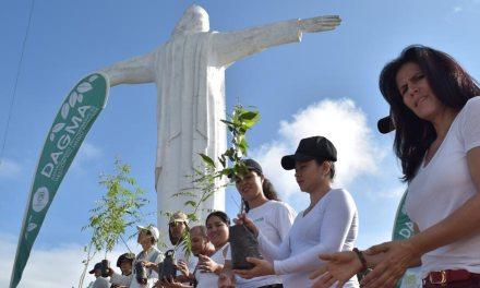 Cali le cumplió a Cristo Rey: 500 árboles plantados y más de 400 personas en primera siembra del Plan Ave Fénix