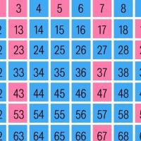 ¿Qué son los números primos? ¿Y los compuestos?