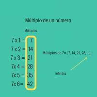 ¿Qué es un múltiplo? ¿Qué son los múltiplos de un número?