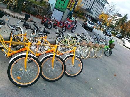 Deretan sepeda yang diparkir dengan sangat rapih di jalan mau masuk ke Culinary School of Korea