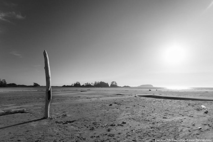 Chesterman beach near Tofino
