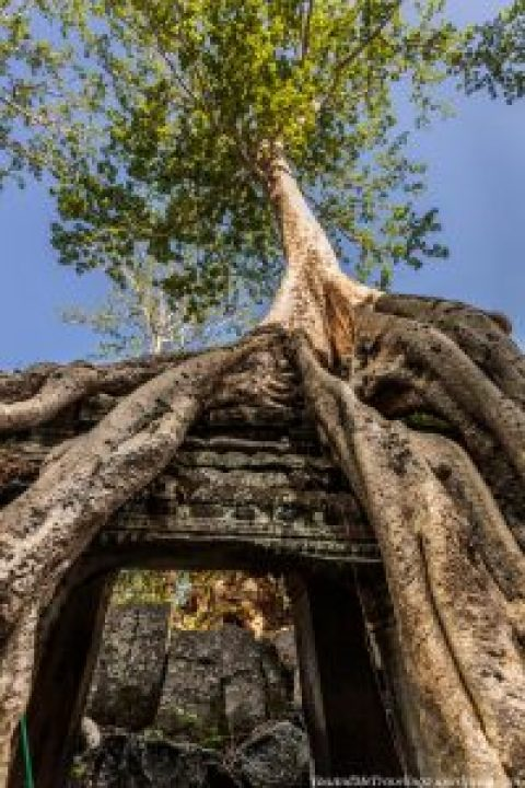 cambodia-angkor-temple-culture-16