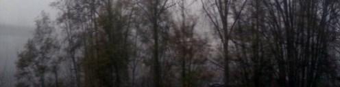 Snow filled hazy days