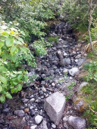 Small waterfall/stream
