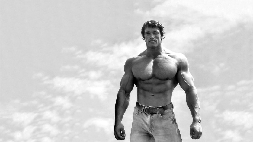 Learn The 6 Rules Of Success By Arnold Schwarzenegger And