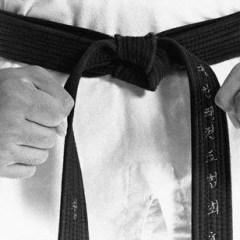 What Can We Learn From the Martial Artist Black Belt Parable