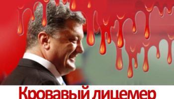 политика Украины, европа перестала поддерживать Украину, новая партия Украины, правищая партия Украины, Украинский кризис, кризис в политики Украины, опозиционная партия Украины, новая политика Украины