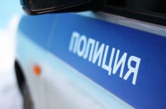 Следователями Управления МВД России по городу Орску закончено расследование уголовного дела, возбужденного в отношении 29-летней девушки