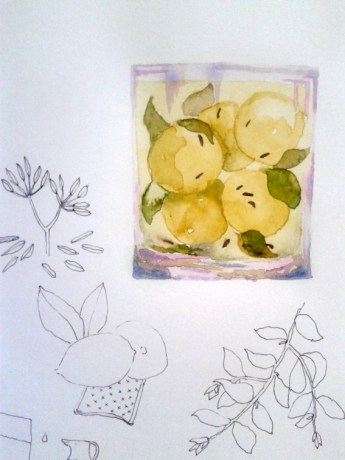 illustration_by_youdesignme-yogurt-basil-balls-wip01