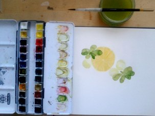 illustration_by_youdesignme-yogurt-basil-balls-wip03