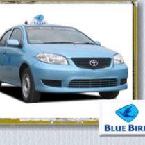 Bluebird Taxi in Bali