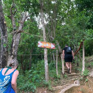 zipline sign nestled in the forest with tree root stairs and female and male walking up