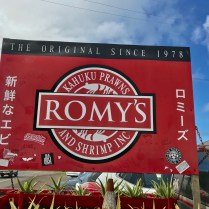 Romy's Travel Budget Guide To Oahu