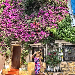 old town marbella floral scenery