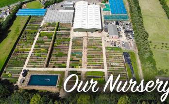 YouGarden - Our Nursery