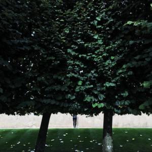 olivier-morisse-24