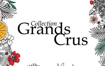 [BERDOUES] Conseil en stratégie social media pour la gamme de parfums Grands Crus