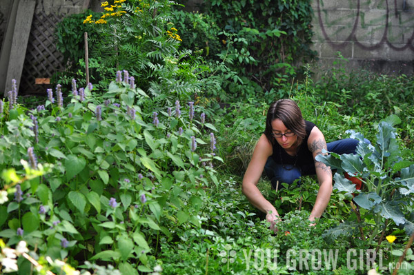 You Grow Girl Handy Garden Tips