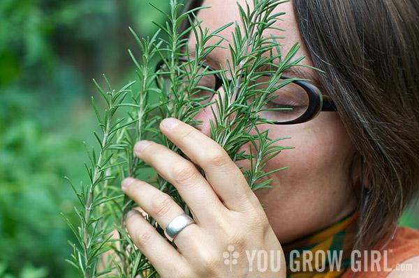 Gayla Smells Rosemary