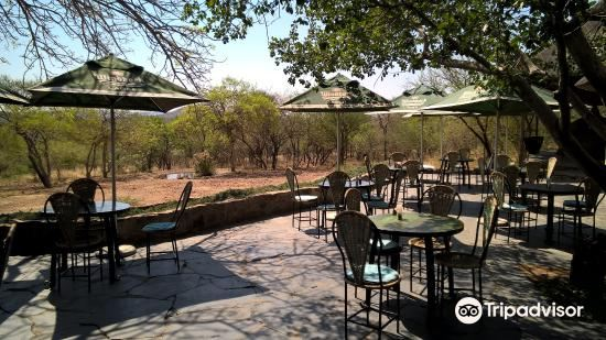 mokolodi nature reserve nearby