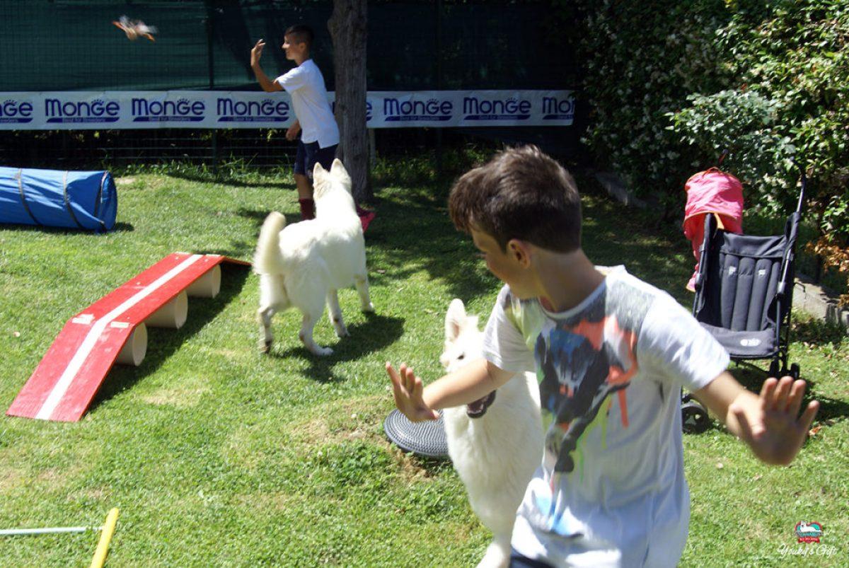 bambini e pastore svizzero