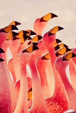 I Heart Internet - June Summer Inspiration via youmademelikeyou.com , flamingo