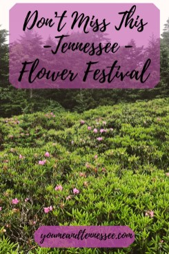 Don't miss this Tennessee flower festival