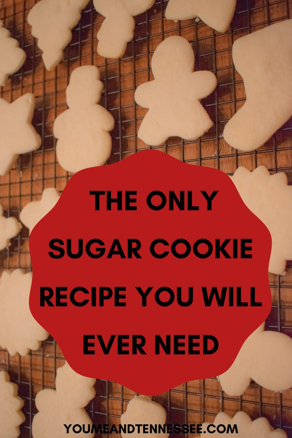 THE ONLY SUGAR COOKIE RECIPE YOU WILL EVER NEED