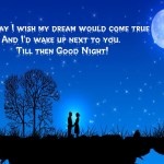 Best Good Night Wishes Images Messages Quotes for Special Friends and Gf/Bf