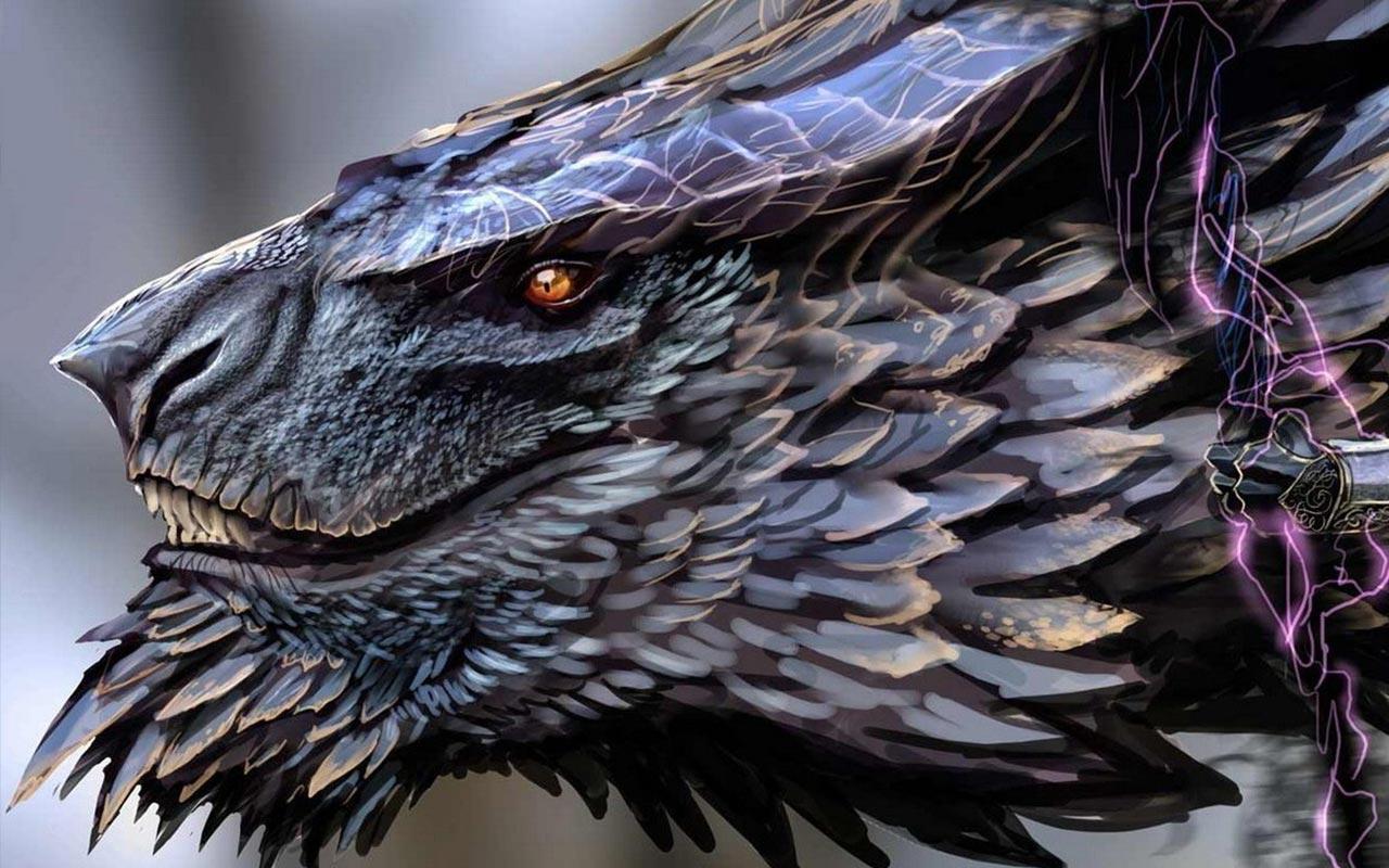Top 50 Hd Dragon Wallpapers Images Backgrounds Desktop