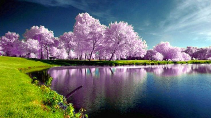 Best 150 Beautiful Nature Wallpapers in HD(High Definition)