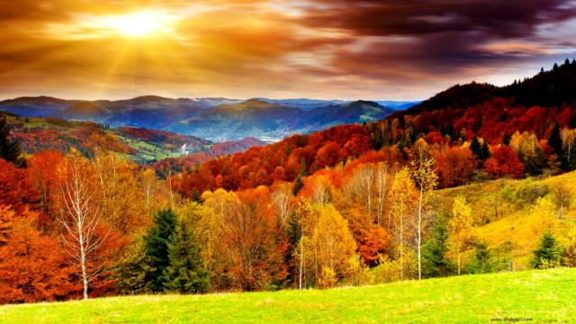 Autumn Nature HD Wallpaper For Laptop