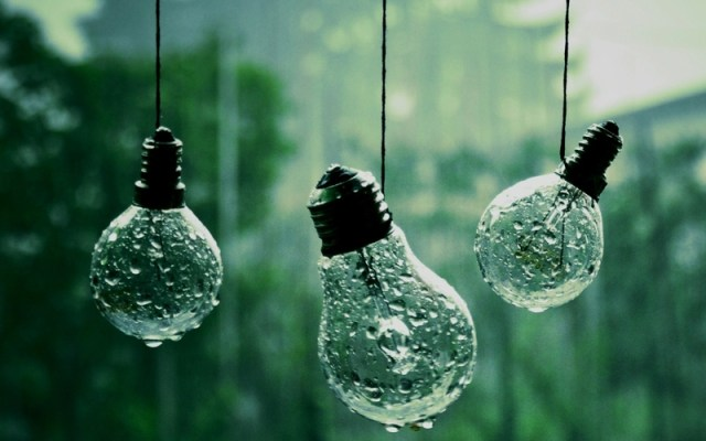 Rain Nature HD Wallpaper For Mobile