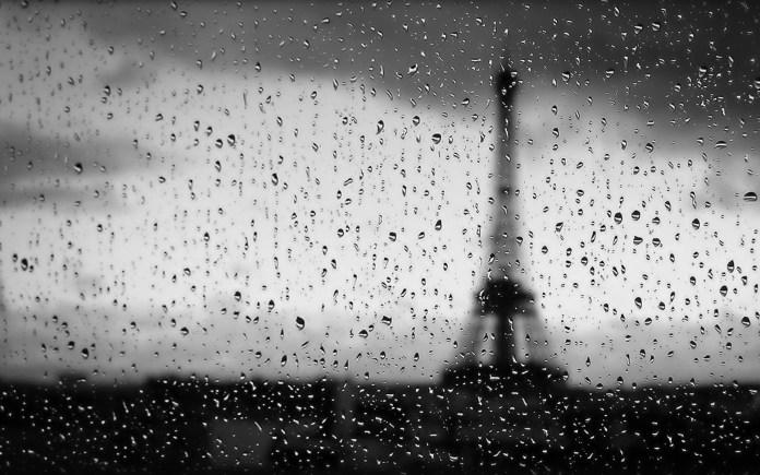 Rain Nature HD Wallpaper For Windows