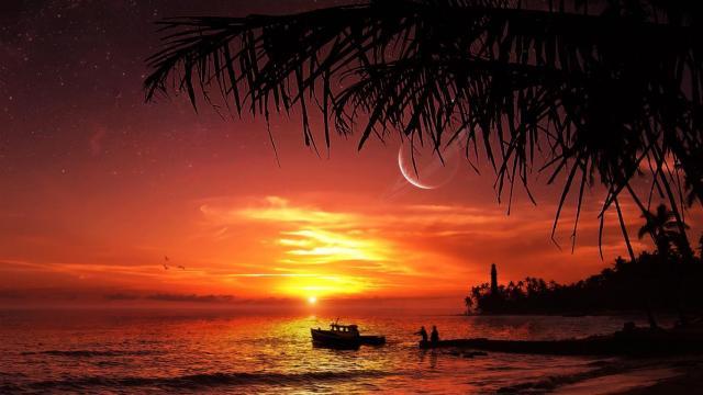 Sunset HD Wallpaper For Mobile