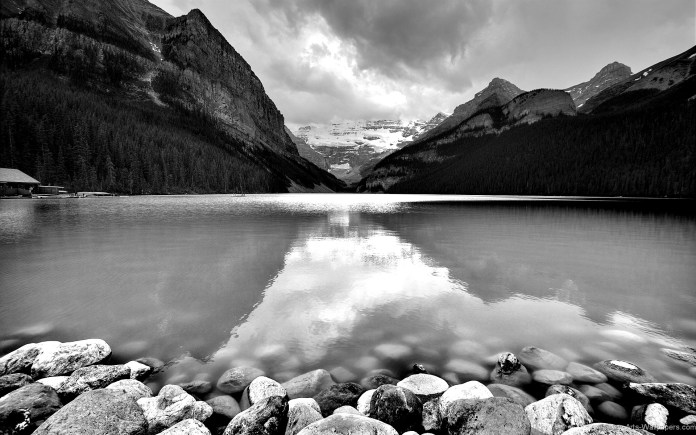 Black And White Nature HD Wallpaper For Widescreen