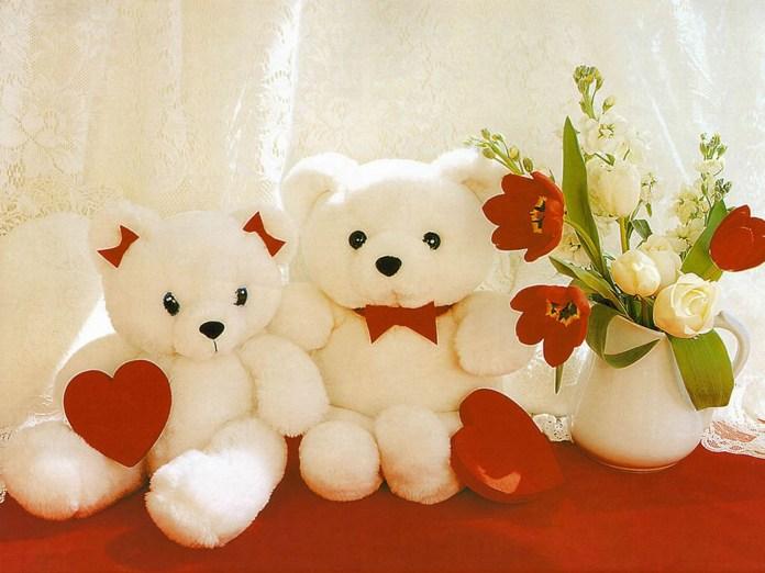 love teddy bear photos collection
