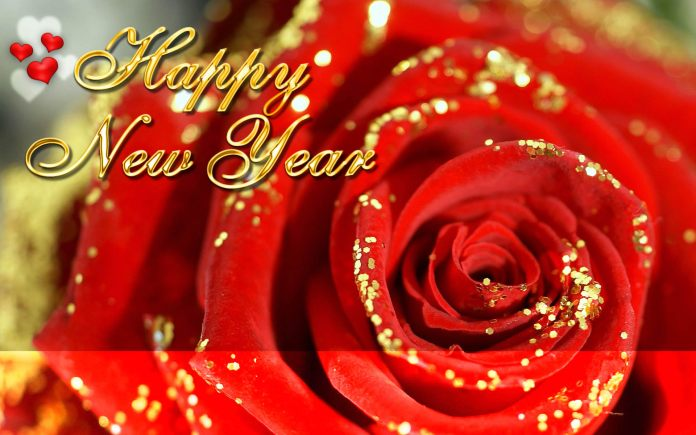 happy new year rose wallpapers