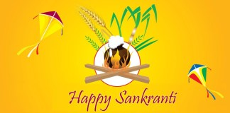 happy sankranti 2016 images new