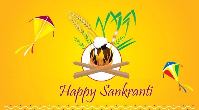 happy sankranti 2016 images new