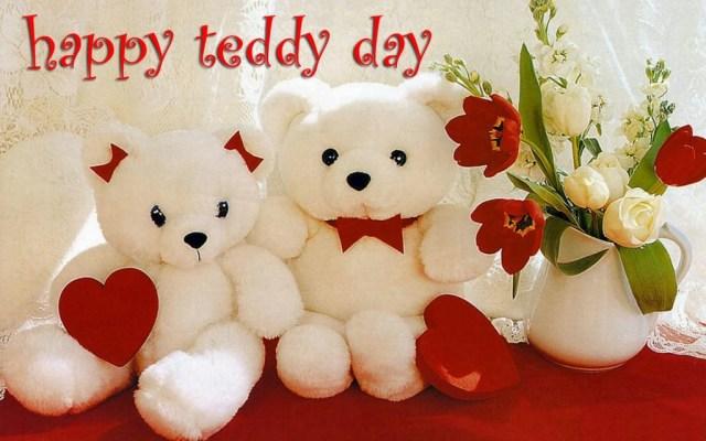 happy teddy bear day hd wallpapers