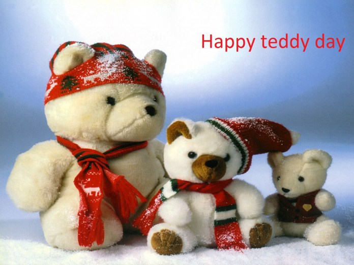 happy teddy bear day hd wallpapers free download