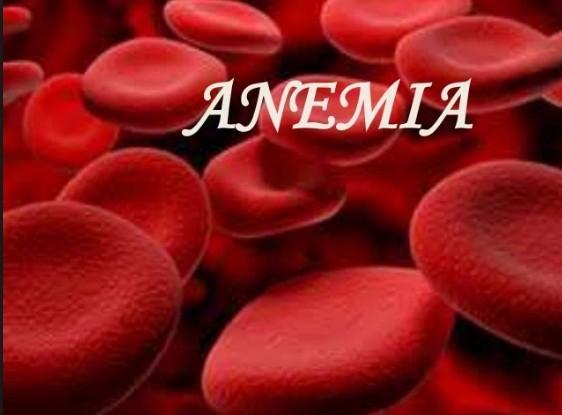 Coriander Seeds Prevent Anemia