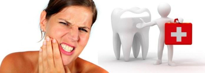 Eucalyptus Oil For Dental Care