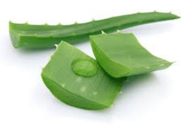 How To Get Rid Of Dark Elbow At Home by aloe vera
