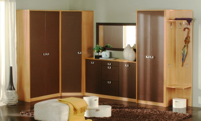 Simple Wardrobes Designs For Indian Bedrooms