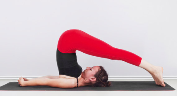 plow pose of yoga aasan