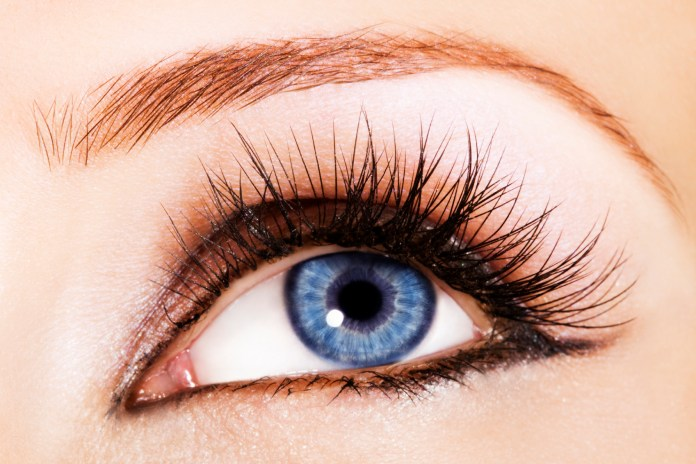 How To Grow Eye Lashes Longer And Thicker At Home ...