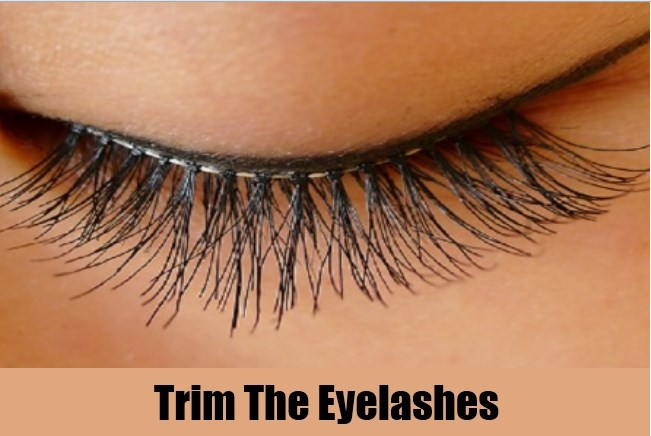 trim the eye lashes